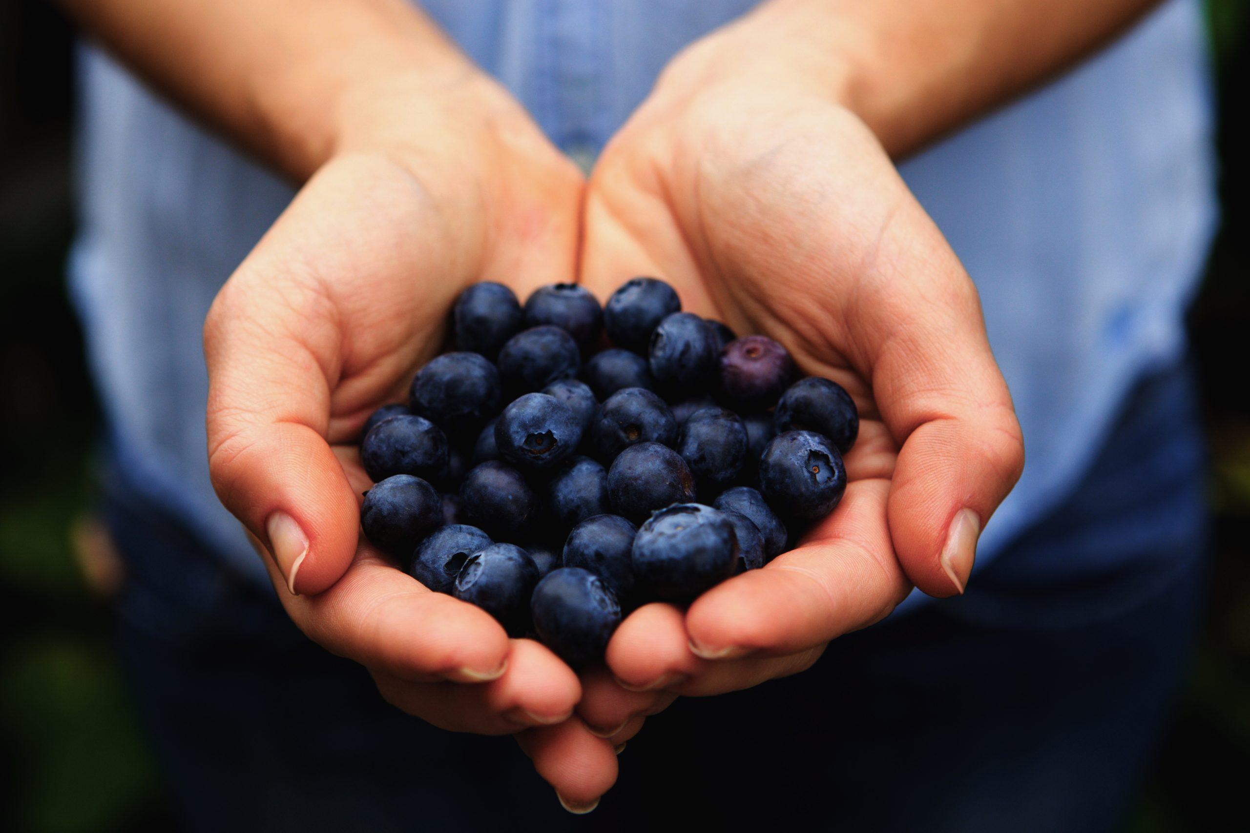 Poignée de bleuets biologiques